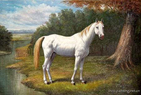 动物马斑马题材油画 ma065