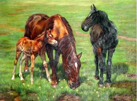 动物马斑马题材油画 ma136