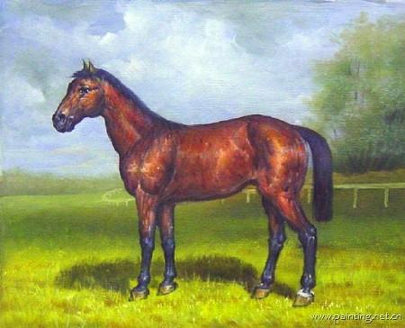 动物马斑马题材油画 ma147